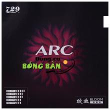 729 BLOOM ARC